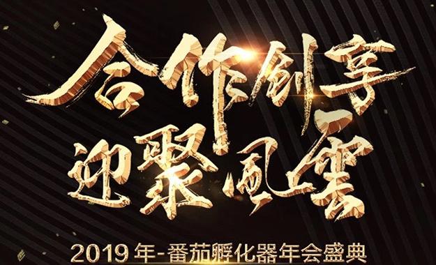番茄孵化器·2019年会盛典:合作创享,迎聚风云!